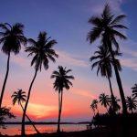 Cestovní pojištění Srí Lanka