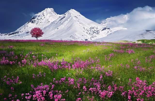 cestovní pojištění alpy
