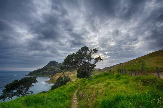 Cestovní pojištění Nový Zéland